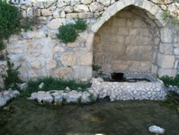 watering pool