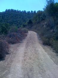 Emperor Hadrian Road