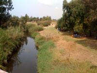Alexander river bank