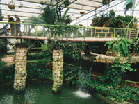Utopia Park Bridge