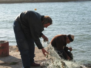 Image of Arab fishermen