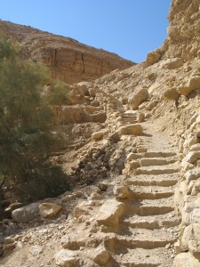 Image of En Gedi trail